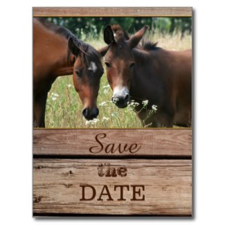 Rustic wood country Save the Date postcard featuring two horses