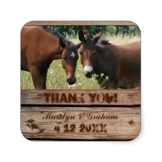 Equestrian wedding Thank You sticker featuring two horses and rustic wood