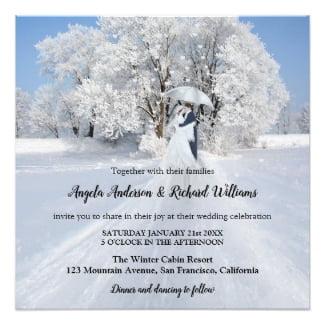 Fine Art Winter Wonderland Wedding Collection