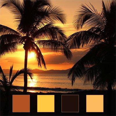 Tropical Palm Beach Wedding Color Palette