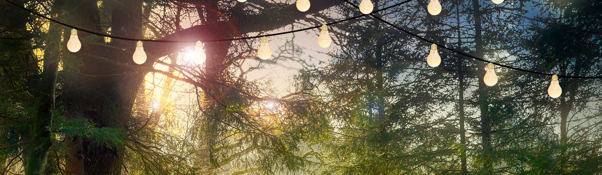 Enchanted Forest and Garden Weddings