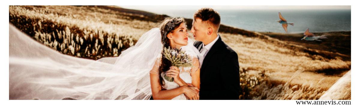 Virtual Wedding
